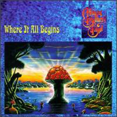 Soulshine – The Allman Brothers Band 选自《Where It All Begins》专辑